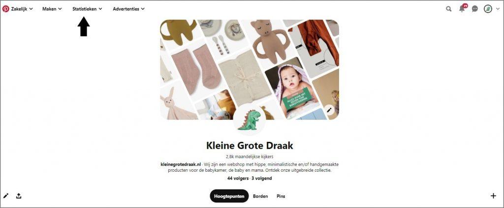 Pinterest-Statistieken-KleineGroteDraak
